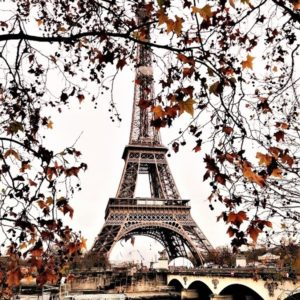 Eiffel Tower with Boat Cruise & Open Tour